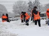 Стоимость уборки снега в Санкт-Петербурге